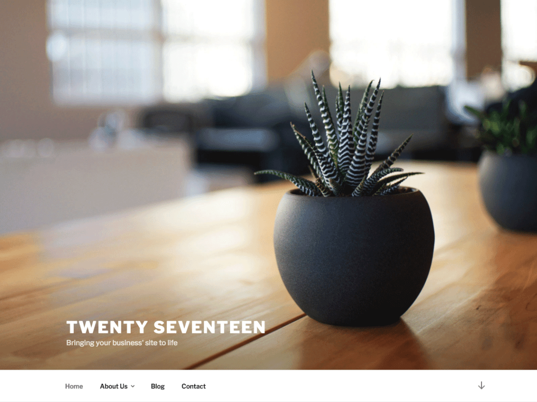 twenty seventeen theme
